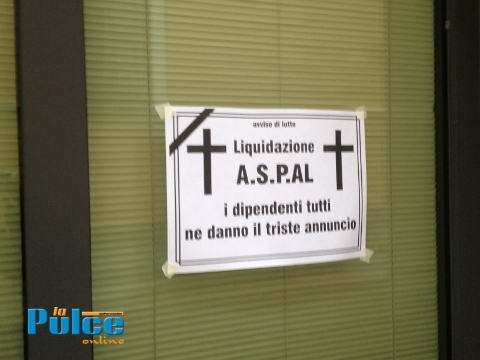 Immagineaspal