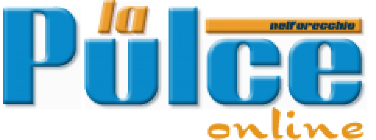cropped-Pulce-Logo-PNG.png