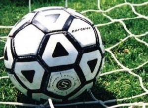 calcio-300×219