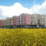 case-popolari-150×150