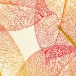 foglie-autunno-150×150