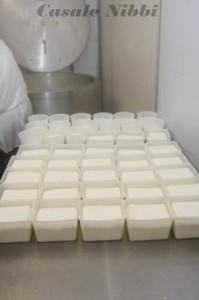 formaggi-merlo-199×300