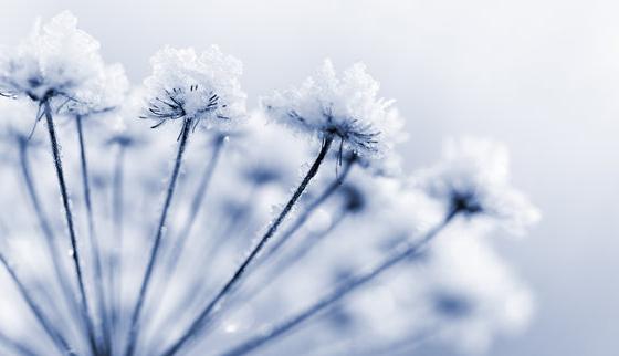 gelo-soffioni-inverno-freddo