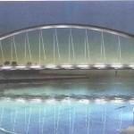 ponte-meier-150×150
