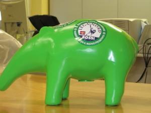tapiro-300×225